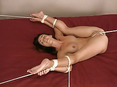 BDSM Bondage Brunette Small Tits