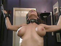 BDSM Brunette Nylon Big Boobs