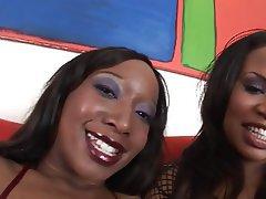 BBW Hairy Lesbian Big Boobs