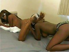 Lesbian Hairy Strapon Brunette
