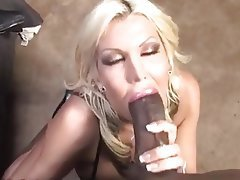 Blonde Blowjob Pornstar Interracial