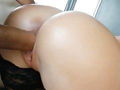 Big Nipples Brazil Hardcore POV