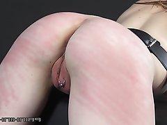 BBW BDSM Femdom