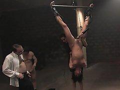 Anal BDSM Bondage Brunette