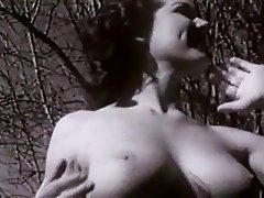Babe Brunette Softcore Vintage