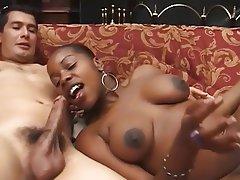 Babe Big Boobs Hardcore Interracial