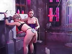 Brunette Lesbian Big Boobs Group Sex BDSM