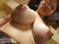 Asian Babe Big Boobs Nipples