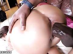Babe BBW Big Ass Ebony