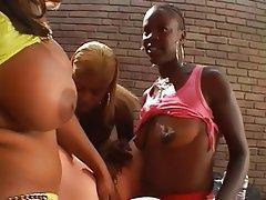 Anal Lesbian Interracial Strapon