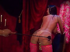 BDSM Big Boobs Brunette Lingerie MILF