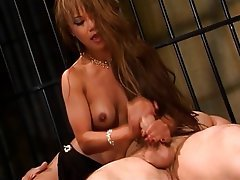 Blowjob Brunette Asian Interracial