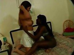 Babe Brazil Lesbian