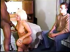 Bisexual Cuckold Interracial