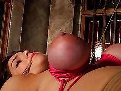 BDSM Brunette Lingerie