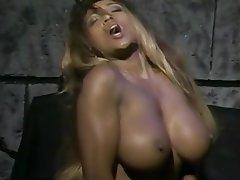 Big Boobs Big Butts Pornstar